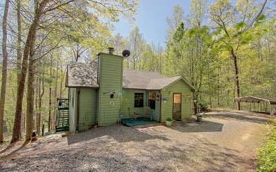 Blairsville Single Family Home For Sale: 1069 Stephens Road