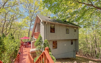 Blairsville Single Family Home For Sale: 582 Little Coosa Road