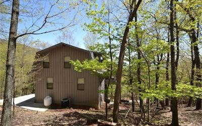 Jasper Single Family Home For Sale: 1224 Little Hendricks Mtn