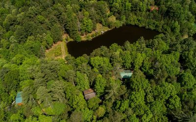 Ellijay Single Family Home For Sale: 168 Spring Lakes Dr