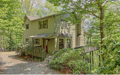 Blairsville Single Family Home For Sale: 96 Wilson Mountain Road