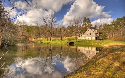 Blue Ridge Single Family Home For Sale: 397 Weaver Creek Road