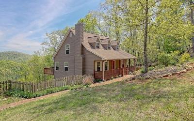 Blairsville Single Family Home For Sale: 698 Ross Ridge Road