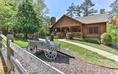 Ellijay Single Family Home For Sale: 774 Villa Drive