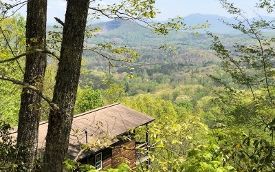 Young Harris Single Family Home For Sale: 8085 True Love Mtn. Rd.