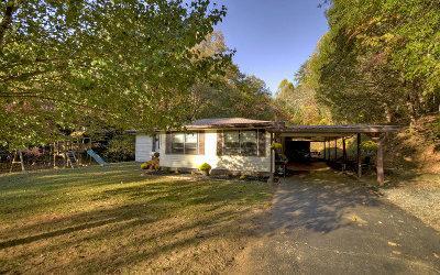 McCaysville Single Family Home For Sale: 175 Williamstown Rd