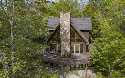 Mineral Bluff Single Family Home For Sale: 883 Bear Mountain Pass