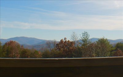 Blue Ridge Single Family Home For Sale: 8743 Old Dial Road