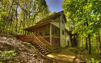 Ellijay Single Family Home For Sale: 843 Fern Valley Rd