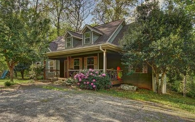 Young Harris Single Family Home For Sale: 1291 Cherokee Trail