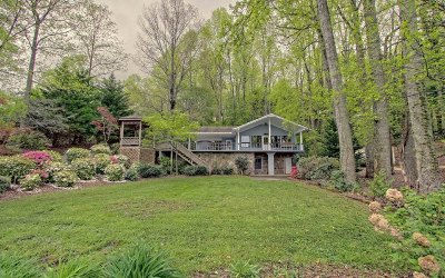 Hiawassee Single Family Home For Sale: 295 Omega Way