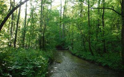Ellijay Residential Lots & Land For Sale: 306 Westwind Dr
