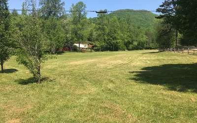 Hayesville Single Family Home For Sale: 7680 Fires Creek Rd