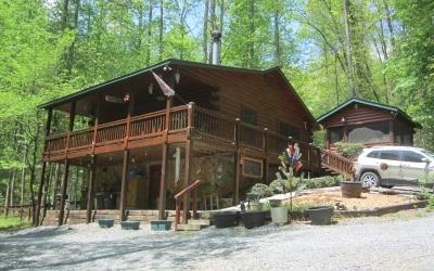 Cherry Log Single Family Home For Sale: 151 Hatchet Trail