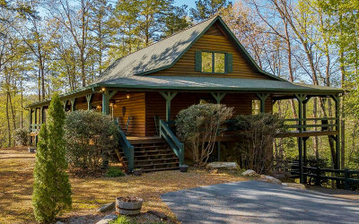Blue Ridge Single Family Home For Sale: 301 Dream Catcher