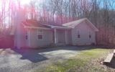 Hayesville Single Family Home For Sale: 226 Blankenship Lane