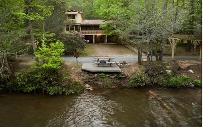 Blue Ridge Single Family Home For Sale: 770 Riverside Lane