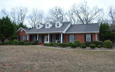 Ellijay Single Family Home For Sale: 309 Leonard Evans