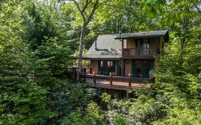 Ellijay Single Family Home For Sale: 120 Cascade Pt
