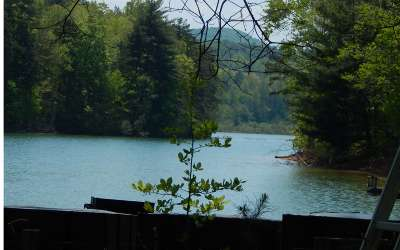 Blairsville Single Family Home For Sale: 36 Cozy Cove Trail