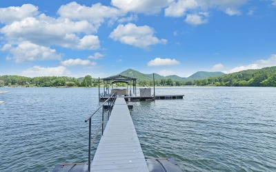 Hiawassee Single Family Home For Sale: 1290 Highway 75n