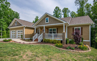Ellijay Single Family Home For Sale: 222 Meadow Circle