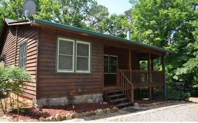 Ellijay Single Family Home For Sale: 196 Seneca Way