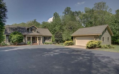 Blairsville Single Family Home For Sale: 91 Patricks Drive