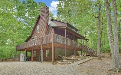 Blairsville Single Family Home For Sale: 86 Buddy Lane