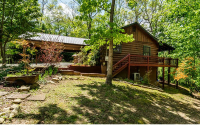 Mineral Bluff Single Family Home For Sale: 210 Bear Walk Rd