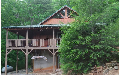Blue Ridge Single Family Home For Sale: 1450 Ritchie Creek Rd