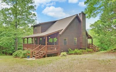 Blairsville Single Family Home For Sale: 142 Emma Grace Lane
