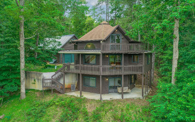 Ellijay Single Family Home For Sale: 48 Myna Court