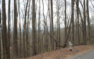 Ellijay Residential Lots & Land For Sale: Skyview Dr Lt M113