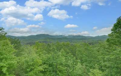 Blue Ridge Single Family Home For Sale: 349 Cloudland Trace