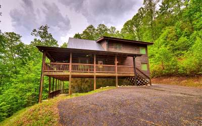 Ellijay Single Family Home For Sale: 75 Valley Overlook