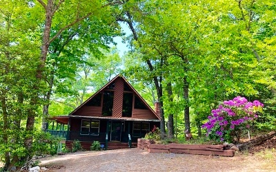 Blairsville Single Family Home For Sale: 127 Turkey Road