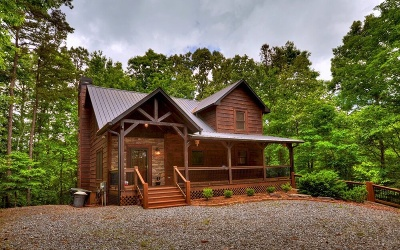 Ellijay Single Family Home For Sale: 102 Abbatis Court
