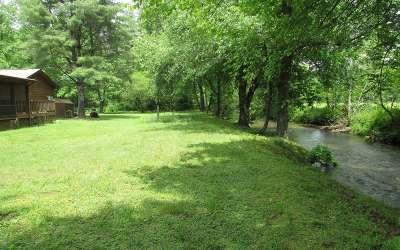 Blue Ridge Single Family Home For Sale: 489 Laurel Circle