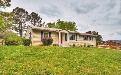 McCaysville Single Family Home For Sale: 60 Oak Drive
