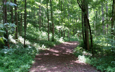 Hayesville Residential Lots & Land For Sale: Serenity Lane