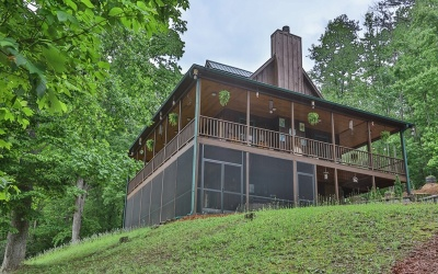 Mineral Bluff Single Family Home For Sale: 154 Shechinah