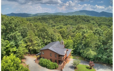 Mineral Bluff Single Family Home For Sale: 320 Indian Lake Rd