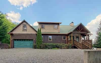 Hiawassee GA Single Family Home For Sale: $339,000