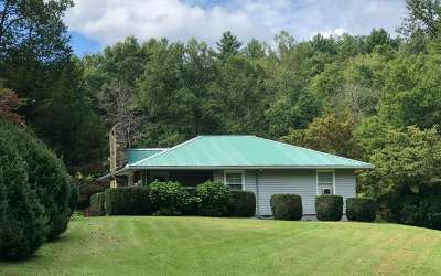 Blairsville Single Family Home For Sale: 676 Bitter Creek Road