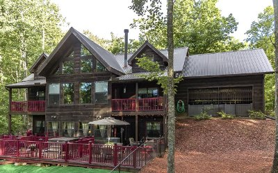 Mineral Bluff Single Family Home For Sale: 391 Stuart Mountain Road