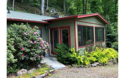 Hayesville Single Family Home For Sale: 162 Hiawassee River Road