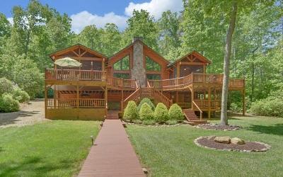 Blairsville Single Family Home For Sale: 276 Ridge Creek Road