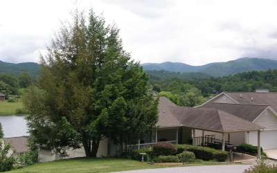 Hiawassee Single Family Home For Sale: 409 Admiral Point