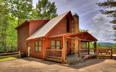 Blue Ridge Single Family Home For Sale: 126 Toccoa Overlook Lane
